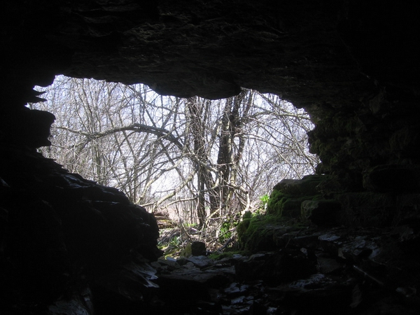 dead mouse cave in ontario